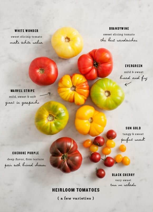 All About Heirloom Tomatoes Love And