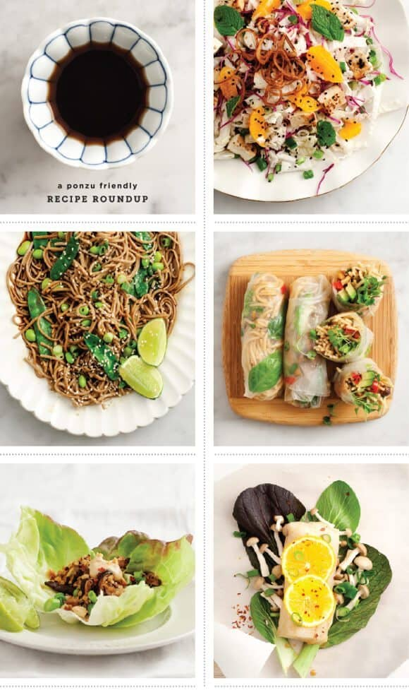 ponzu-friendly recipe roundup / @loveandlemons