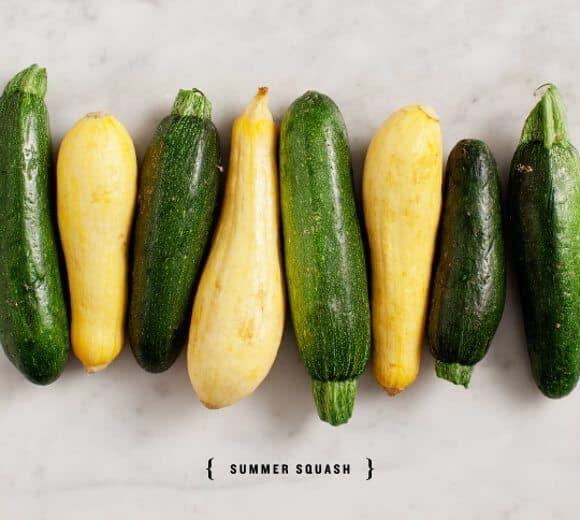 Lemony Summer Squash Orecchiette