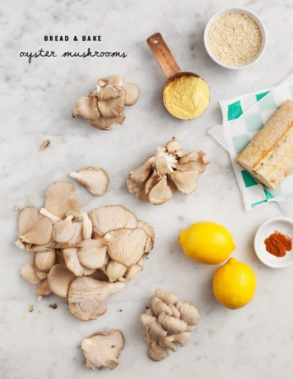 Oyster Mushroom Recipe Ingredients