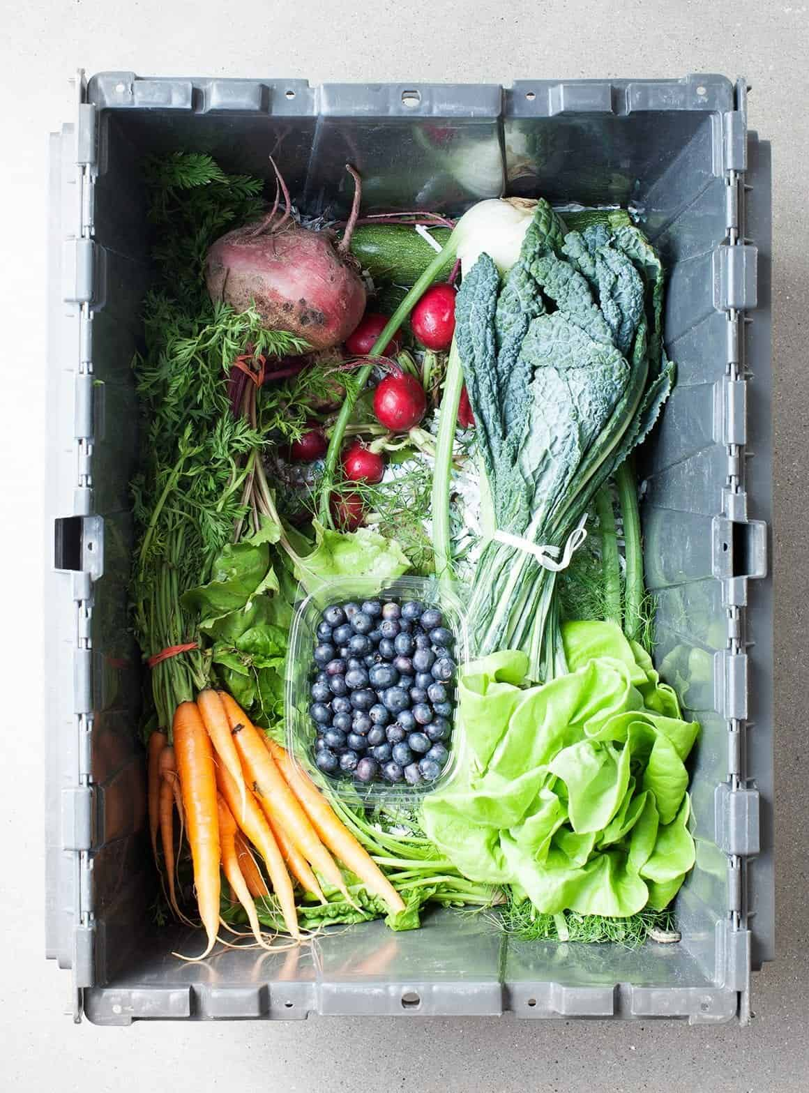 CSA Box Strategies + a Farmhouse Salad
