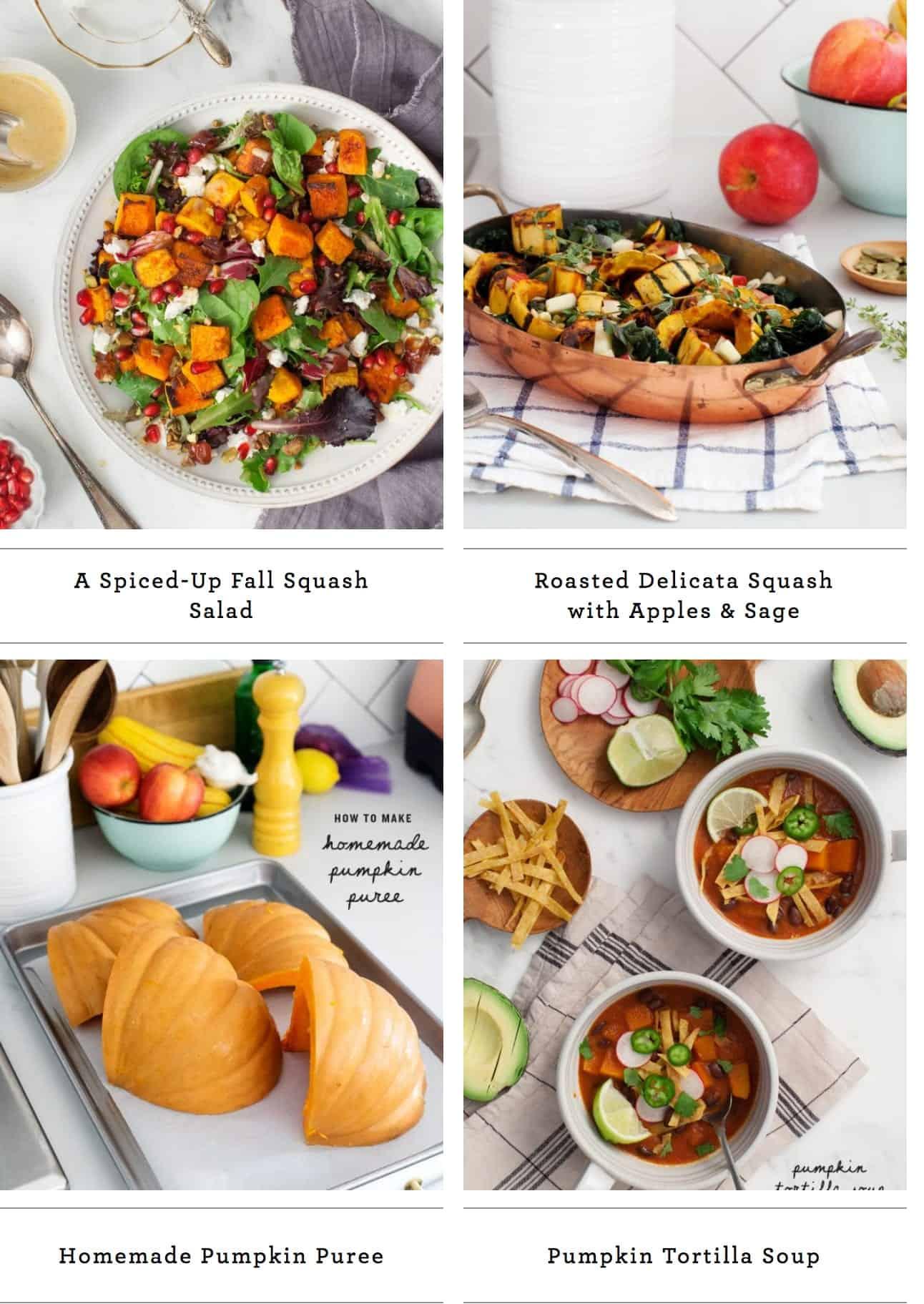 Favorite Fall Squash Recipes