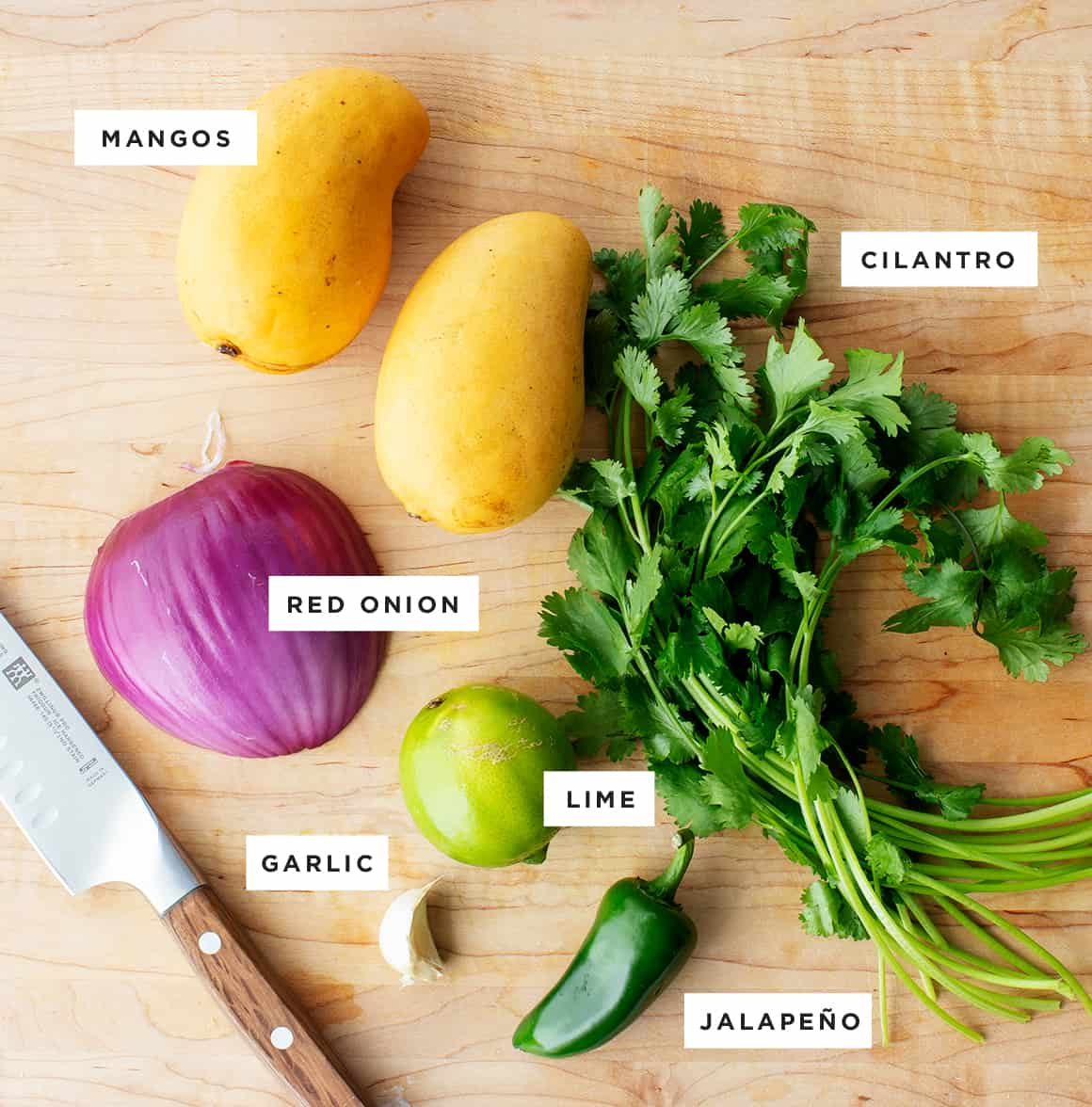 Mango salsa recipe ingredients