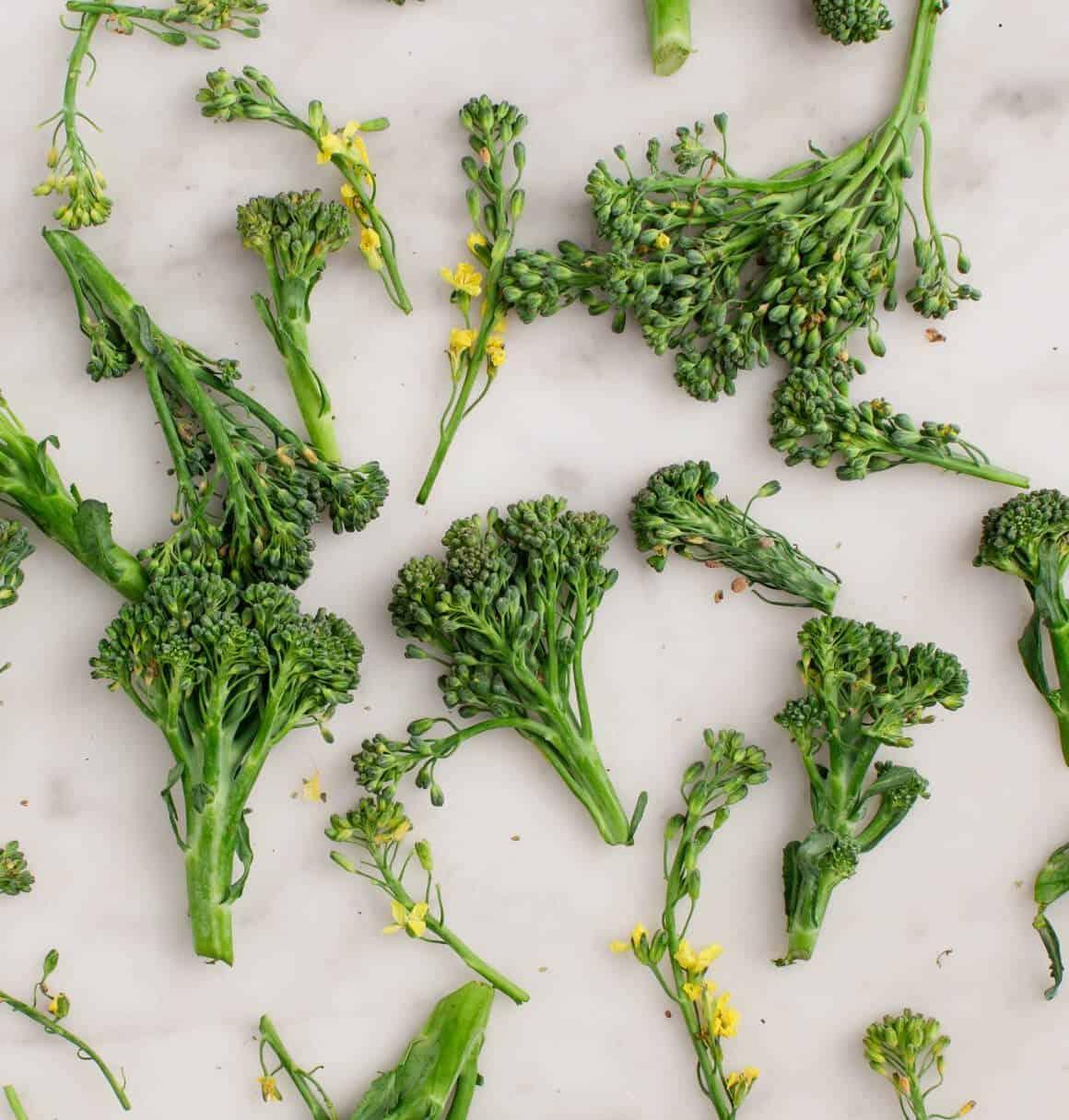 Broccoli Pesto Kale Quinoa Salad